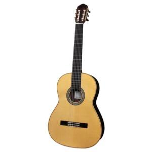 Guitarra Palosanto N8